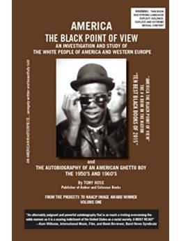 America The Black Point of View