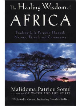 The Healing Wisdom of Africa